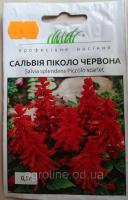Цветы сильвия фото красные