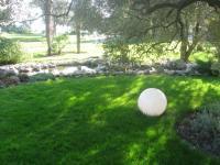Семена травы газонной Садово-парковый газон