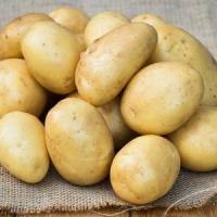Картофель Лаперла сетка 3 кг