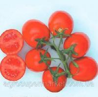 Семена томата Прогресс 1000 шт.Семинис