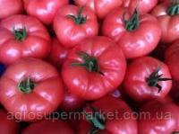 Murpink F1 насіння помідора індетермінантного. 350-450 гр. (500 Seeds -MRTohum).