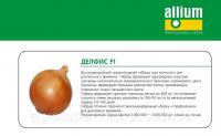 Семена лука Делфис F1 среднепоздний (125дней) высокоурожайный гибрид Allium Италия