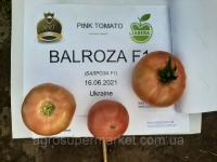 Семена розовый томат БАЛРОЗА F1 (BALROZA F1) Супер ранний, MRTOHUM Турция 1000семян
