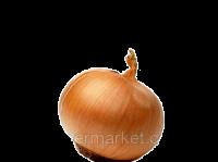 Семена лука Глобус среднепоздний (110дней) высокоурожайный сорт Украина 5кг