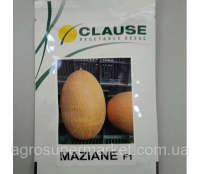 Семена дыни Мазин F1 (МАФ 35) / Mazin F1 (MAF 35) 1000 сем Clause (Клаус) 1000 семян