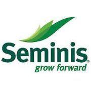 Семена овощных культур Seminis