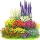 Лекарственные травы, корни, цветы, ягоды