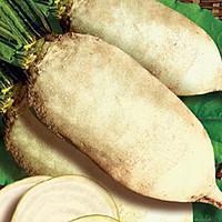 Семена свеклы кормовой Центавр Поли, белая 20 кг Malopolska Hodowla Roslin