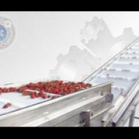 Моечная барботажная машина для овощей и ягод