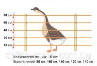 Электропастух для птицы