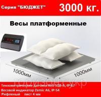 Платформенные весы 1000х1000мм, 3000кг. Бюджет