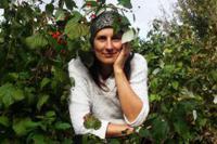 Саженцы малины Амира