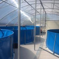 Бассейны для выращивания рыбы в  домашних условиях