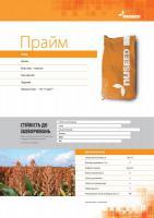 Семена сорго Прайм Nuseed США