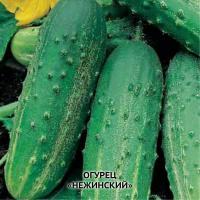 """Семена огурцов """"Неженский"""""""