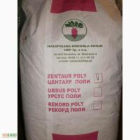 Семена кормовой свеклы, 20 кг, Польша