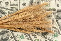 Ринок зерна позитивні перспективи.