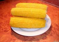 Услуги выращивания сахарной кукурузы Десертная