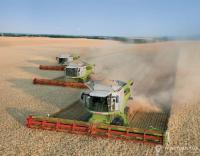 услуги комбайна уборка зерновых сои кукурузы