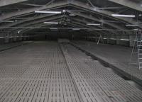 Щелевой пол для свиноферм. Гидроизоляция и защита бетонных конструкций системы навозоудаления.
