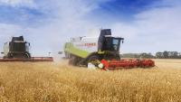 Уборка урожая в Одесской области. Услуги комбайнов, услуги уборки урожая комбайнами