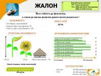 Якісне насіння-шлях до прибутку
