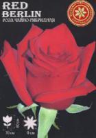 Саженцы роз Red Beauty