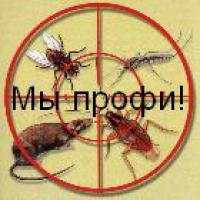 Уничтожение вредителей-клещей, комаров, мух, клопов, тараканов, блох