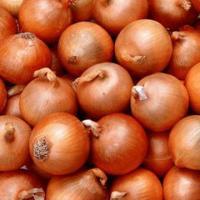 "Семена лука ""Халцедон"""