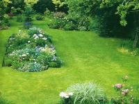 Газон Королевский сад