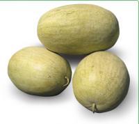 Семена арбуза KS 9944 F1