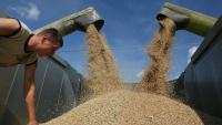 Обмолот зерновых