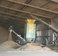 Тенденции рынка приборов, оборудования и услуг по автоматизации процессов сушки зерна.