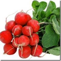 Семена редиса Красный с Белым Кончиком