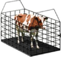 Весы для взвешивания животных, крс, свиней, овей и т.д.