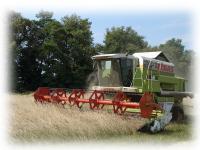 Услуги зерновых комбайнов