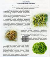 Азотфиксатор клубеньковый Биомаг-СОЯ