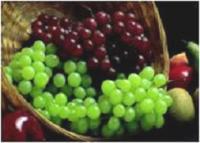 «Нутрівант Плюс™ виноград» - найліпшого винограду гарант