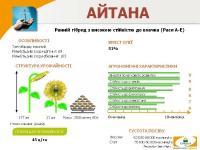 Семена подсолнечника Айтана