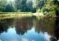 Биопрепарат Аква Трит для очистки водоемов от донного осадка