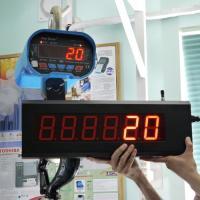 Весы с радиоканалом ВК ЗЕВС III PK на 3 т / 5 т / 10 т