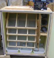 Инкубаторы автоматические от 100 - 2500 яиц.