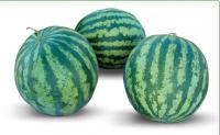 Семена арбуза KS 9021 F1