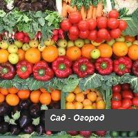 Удобрения Реаком Сад-огород