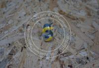 Шпилька ступицы колеса Сипма Z224