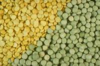 Семена Желтого и Зеленого Гороха,  1 репр.