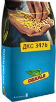 Кукурудза ДКС 3476
