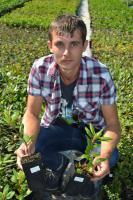 Література -як вирощувати ягідні рослини