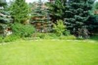 Посев газона. Посевной газон под ключ