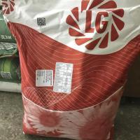 Семена подсолнечника Limagrain Tunca
